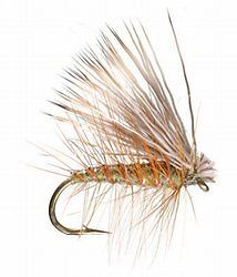 Caddis Fly Lure